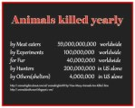 Animal abuse - Holocaust numbers killed yearly